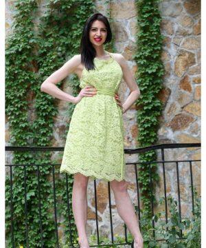 Gentle Dress Lace 3