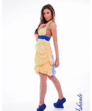 Colored Chiffon Dress 3